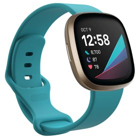 Sport armbånd till Fitbit Sense - Mint